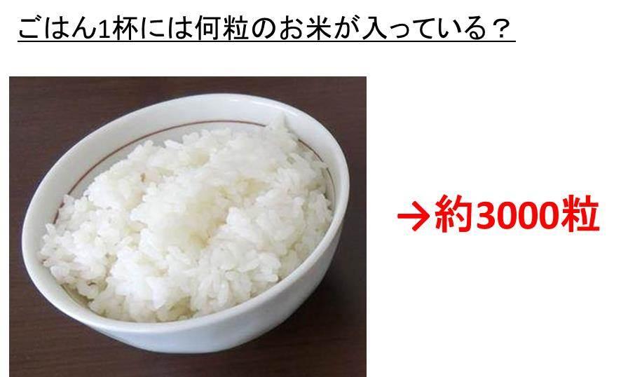 ご飯一杯は何グラム?何ミリリットル?お茶碗一膳には何粒のお米が含ま ...